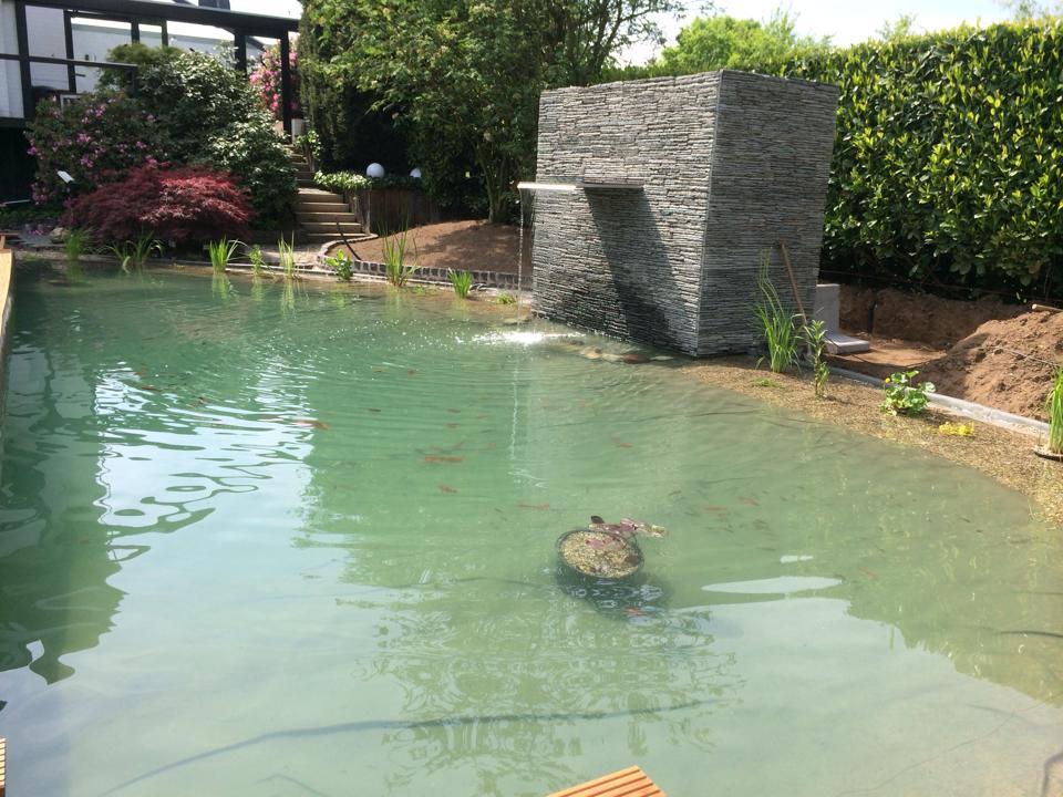Vijver laten aanleggen in uw voor of achter tuin wat for Zelf zwembad bouwen betonblokken